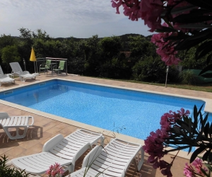One-Bedroom Apartment with Terrace and Pool View